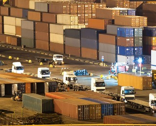 Conifex cargo