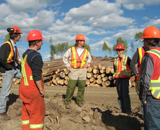 Conifex Timber employees