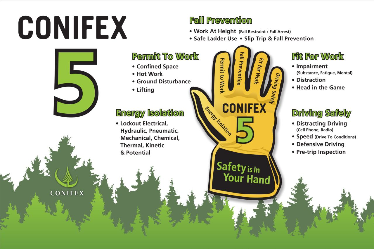 Conifex 5 Poster - Health & Safety